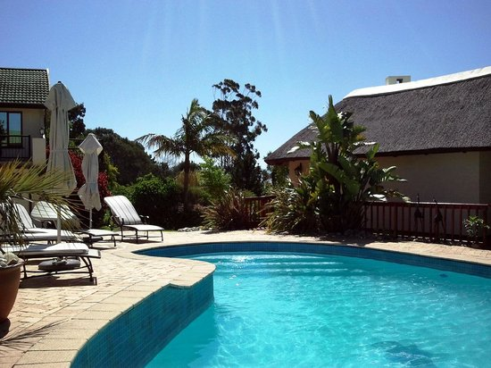 Knysna Country House:                   Pool