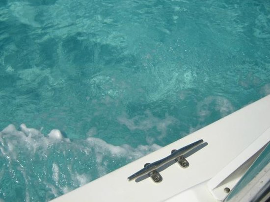 Tucker's Point Dive and Water Sports Centre :                   Beautiful clear water off the boat