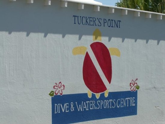 Tucker's Point Dive and Water Sports Centre:                   Proof I was there!