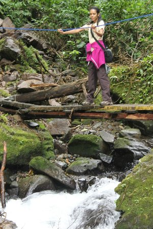 San Luis Waterfall:                   the walk to the falls