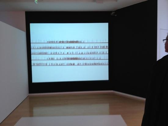 DaimlerChrysler Contemporary (Haus Huth):                   Israeli artist Michal Rowner, one of many great works on this exhibition.