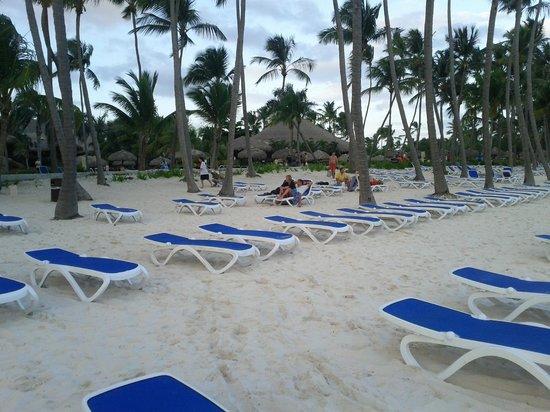 Club Med Punta Cana:                                                       plage à preserver svp