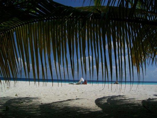 Asdu Sun Island: al riparo