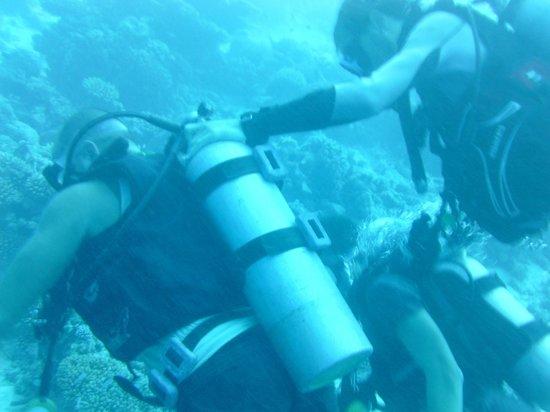 Asdu Sun Island: immersione