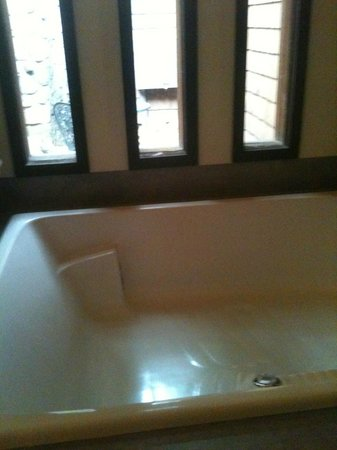 Winery Bed and Breakfast : Whirlpool bath