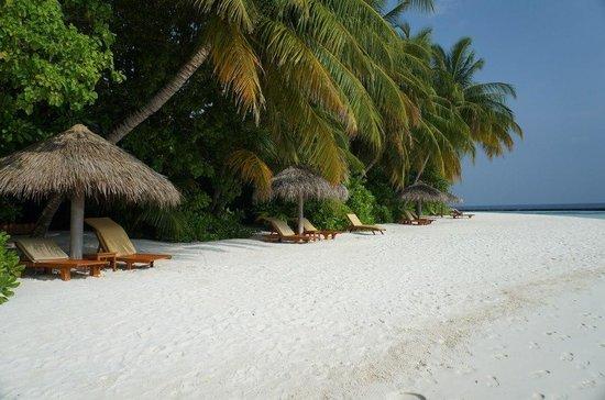 바로스 몰디브 사진