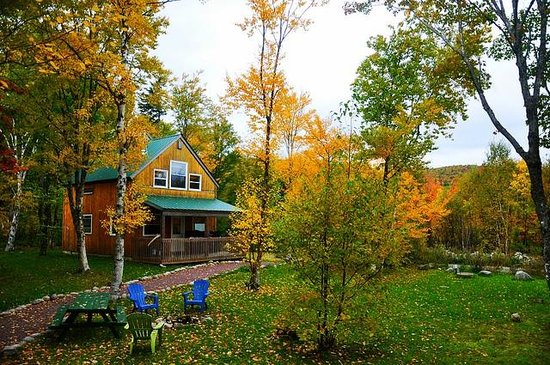 Cabot Shores Wilderness Resort: Green Chalet and Changing leaves!
