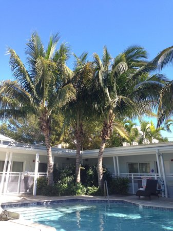 Orchid Key Inn :                   Feel the warmth!