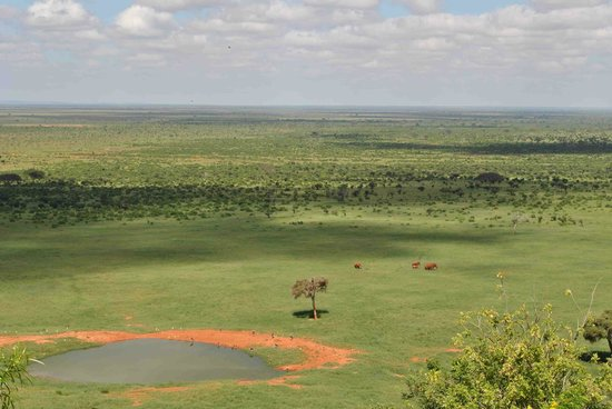 Neslo Tours and Travels Day Tours :                   tsavo east (view from voi safari lodge)