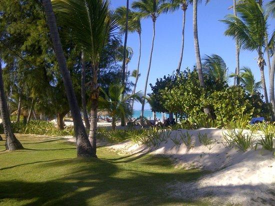 The Royal Suites Turquesa by Palladium: En chemin pour la playa...