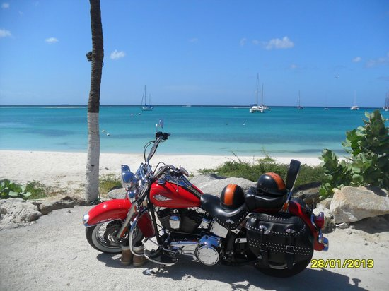 Harley Davidson Aruba Tours At Nikki Beach
