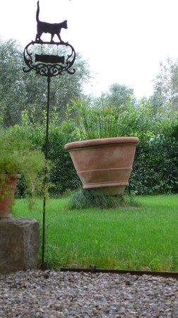 La Capannaccia: Giardino