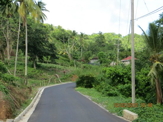 Serenity Lodges Dominica:                   Mian road