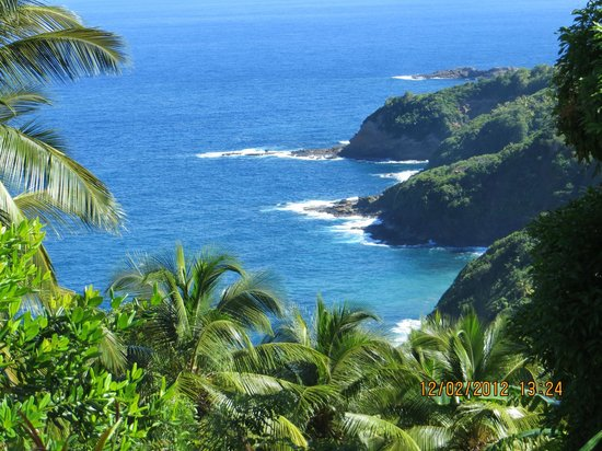 Serenity Lodges Dominica:                   beach foto from the hill