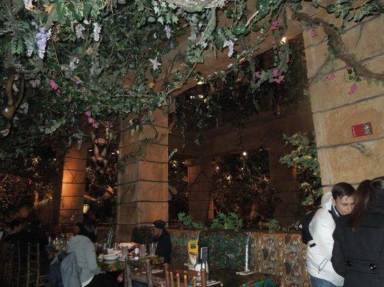 location photo direct link rainforest cafe anaheim california