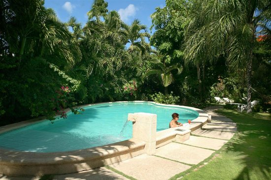 Siboney Beach Club: The pool surrounded by luxuriant plants