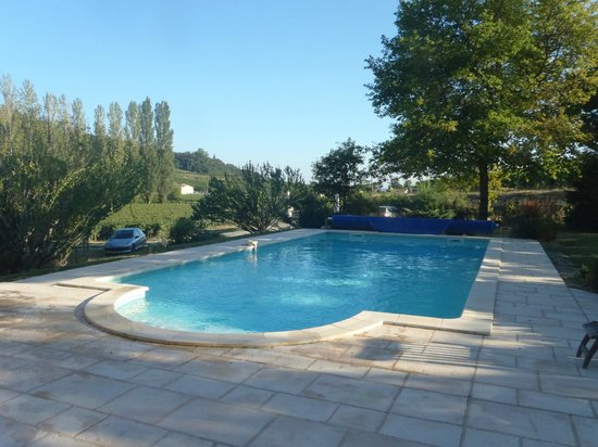 Le Moulin de la Grangere: piscine