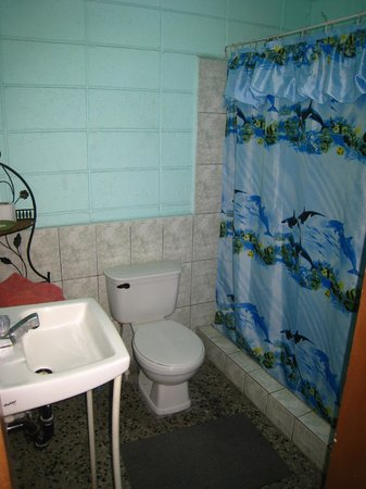 Guesthouse Dos Molinos B&B : Bathroom (insuite)