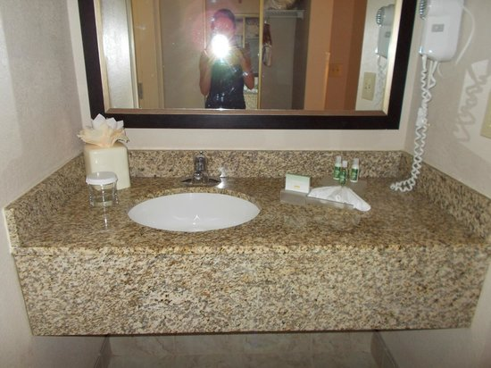 Homewood Suites Orlando/International Drive/Convention Center:                   Bathroom