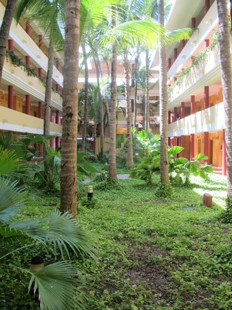 Iberostar Punta Cana:                   Central courtyard in room blocks