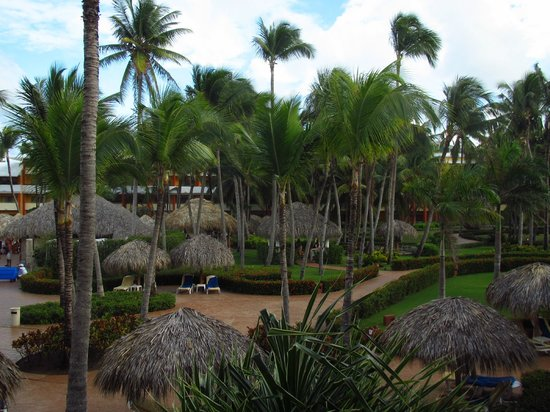 Iberostar Punta Cana:                   View of garden area