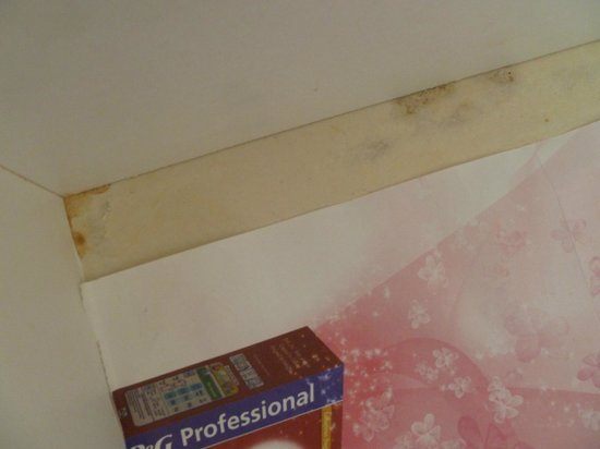 Marine View Hotel Brighton:                   Mouldy, stained drawers with liners