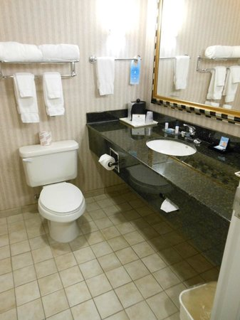 Best Western Plus Castlerock Inn & Suites: Large bathroom vanity & sink area