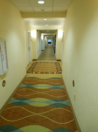 Best Western Plus Castlerock Inn & Suites: hallway