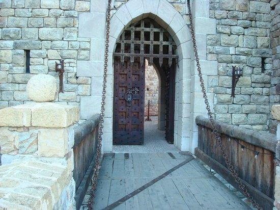 Castello di Amorosa:                   Moat                 