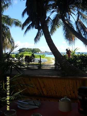 Rosemary's Guesthouse:                   View from breakfast's bungalow
