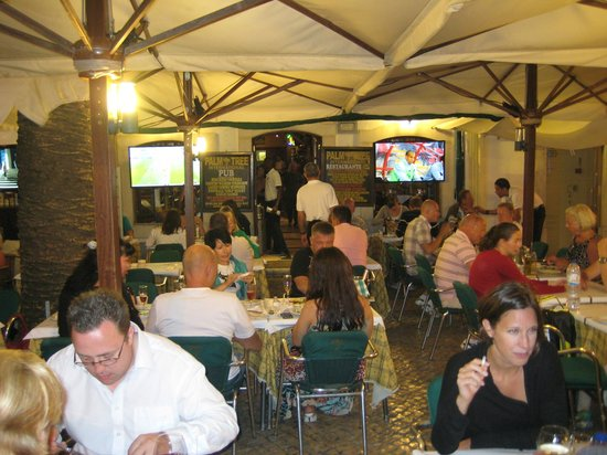 Palm tree pub restaurante