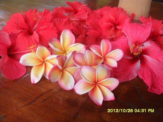 فيلا شيه باتيستا: Hibiscus & Frangipani