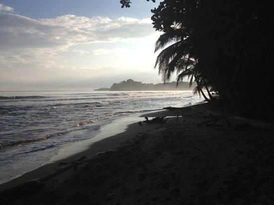Tree House Lodge:                   beach view south                 