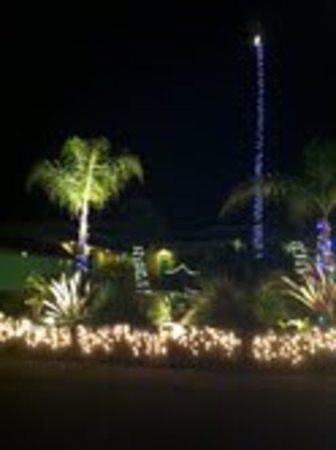 Beach Bungalow Inn and Suites: Happy Holidays at the Bungalow 2012