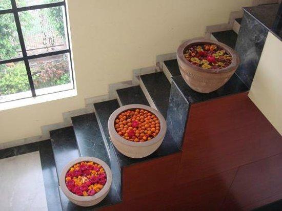 GW Greenwood Art'Otel :                   stairs