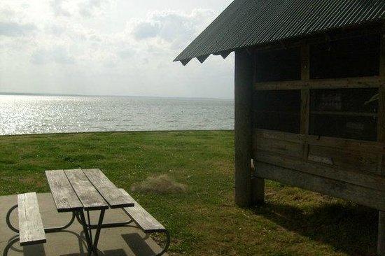 Lake Livingston State Park: Screened Shelter Adn Picnic Area Facing The Lake  At Lake Livingston