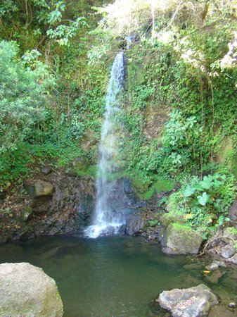 Tilaran, Costa Rica:                   One of the waterfalls on the tour