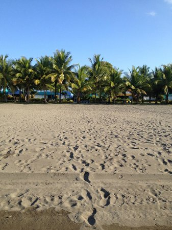 Alma del Pacifico Beach Hotel & Spa: The hotel grounds viewed from the beach