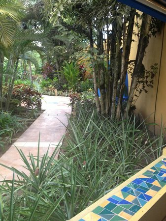 Alma del Pacifico Beach Hotel & Spa: Grounds