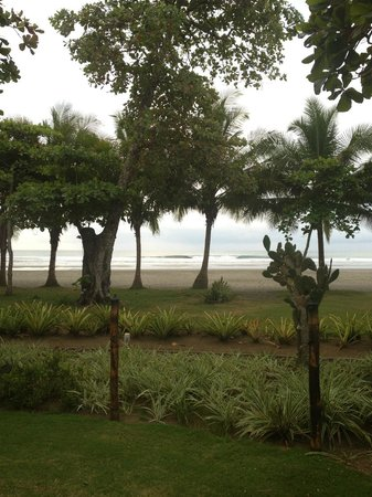 Alma del Pacifico Beach Hotel & Spa: View of the beach from the hotel grounds
