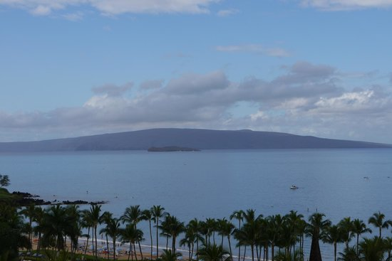 Grand Wailea - A Waldorf Astoria Resort:                   View from my room.