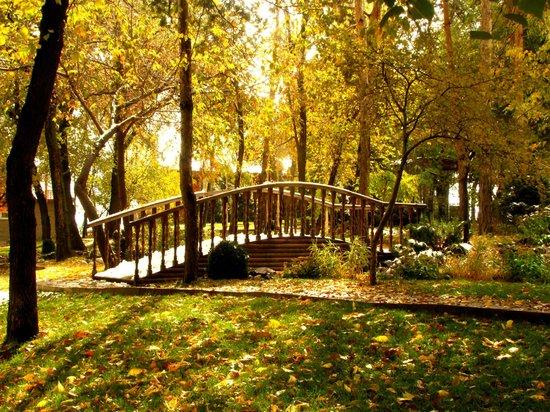 Almaty, Kazakhstan:                   Осень на горе Кок-Тобе