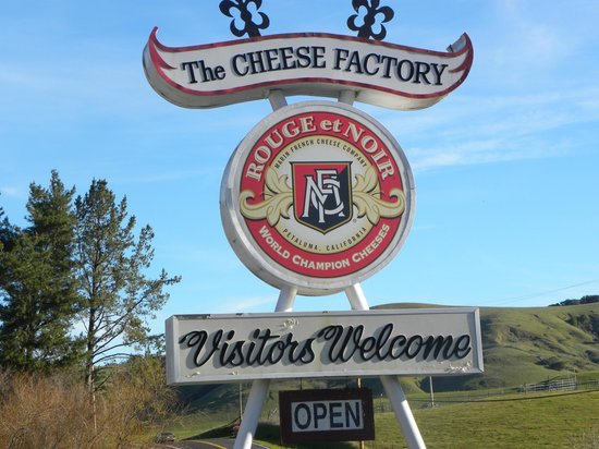 Marin French Cheese Company: Main Sign on road