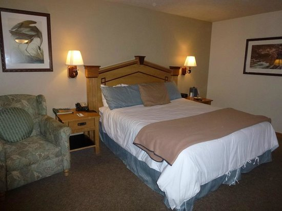 Bonneville Hot Springs Resort & Spa: Room