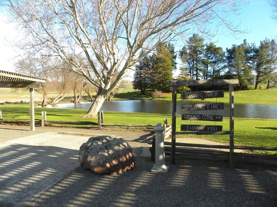 Marin French Cheese Company: Nice pond next to parking for picnic