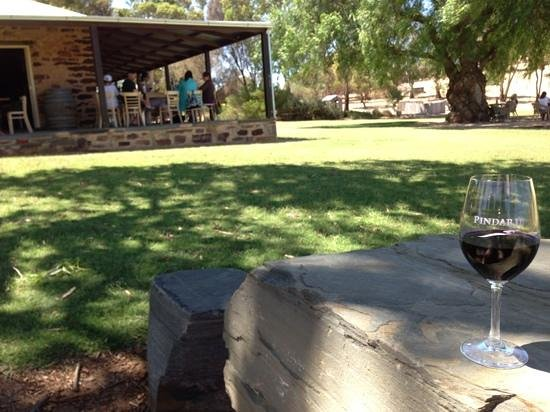 Pindarie Winery:                                     Pindarie Barossa Shiraz under a tree on a lazy Sunday aftern