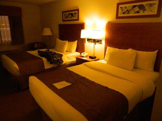 Baymont Inn & Suites Port Huron : Hotel Room