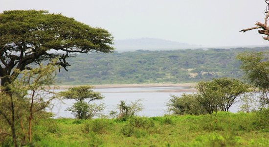 Ndutu Safari Lodge: A nice view from the lodge