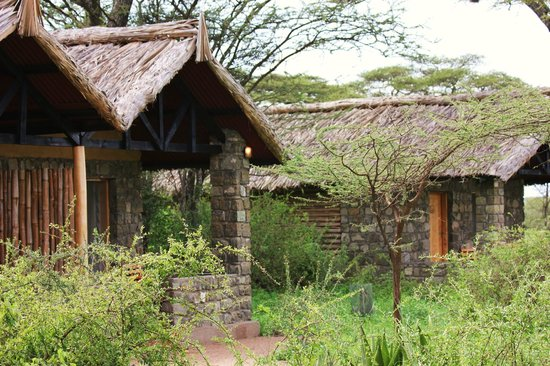 ‪‪Ndutu Safari Lodge‬: The cottages‬