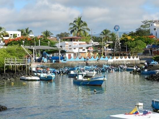 Hotel Solymar:                   Puerto Ayora